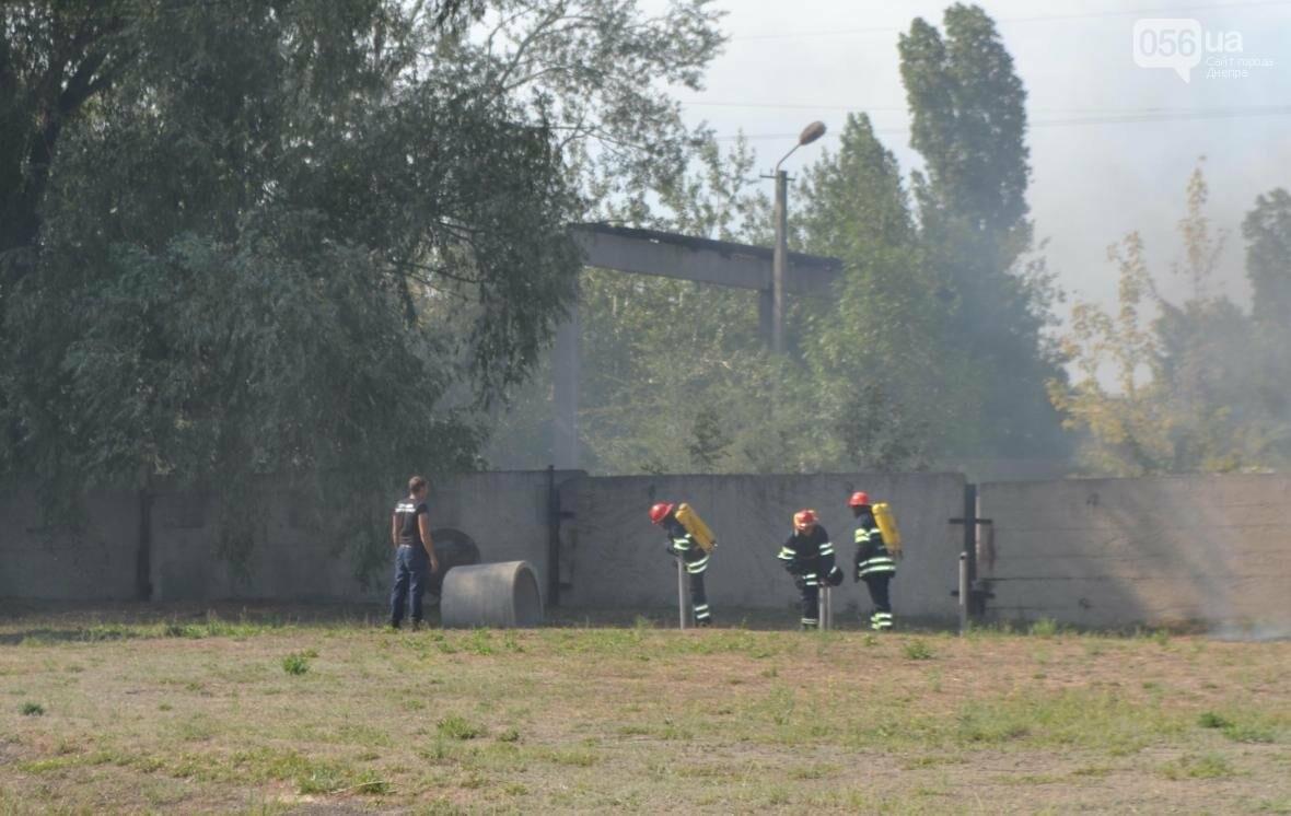 Журналистка 056.ua тушила горящую машину и спасала макет человека (ФОТОРЕПОРТАЖ), фото-2