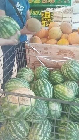 Опасно ли покупать дыни и арбузы в Днепре, фото-5
