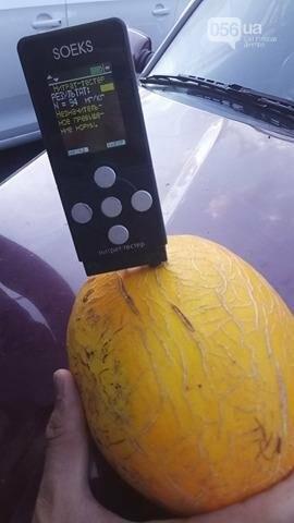 Опасно ли покупать дыни и арбузы в Днепре, фото-11