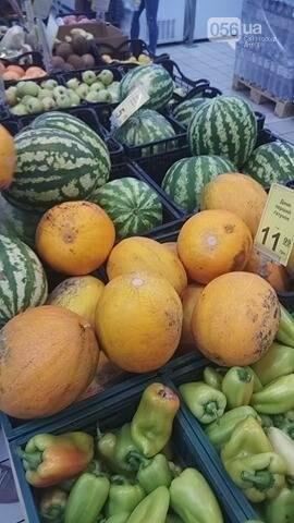 Опасно ли покупать дыни и арбузы в Днепре, фото-10