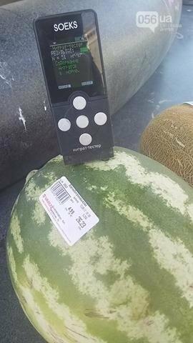 Опасно ли покупать дыни и арбузы в Днепре, фото-7
