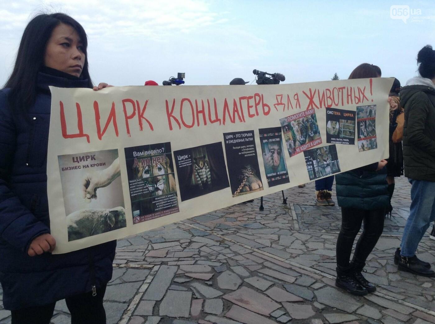 В Днепре зоозащитники пикетировали государственный цирк (ФОТО, ВИДЕО), фото-2