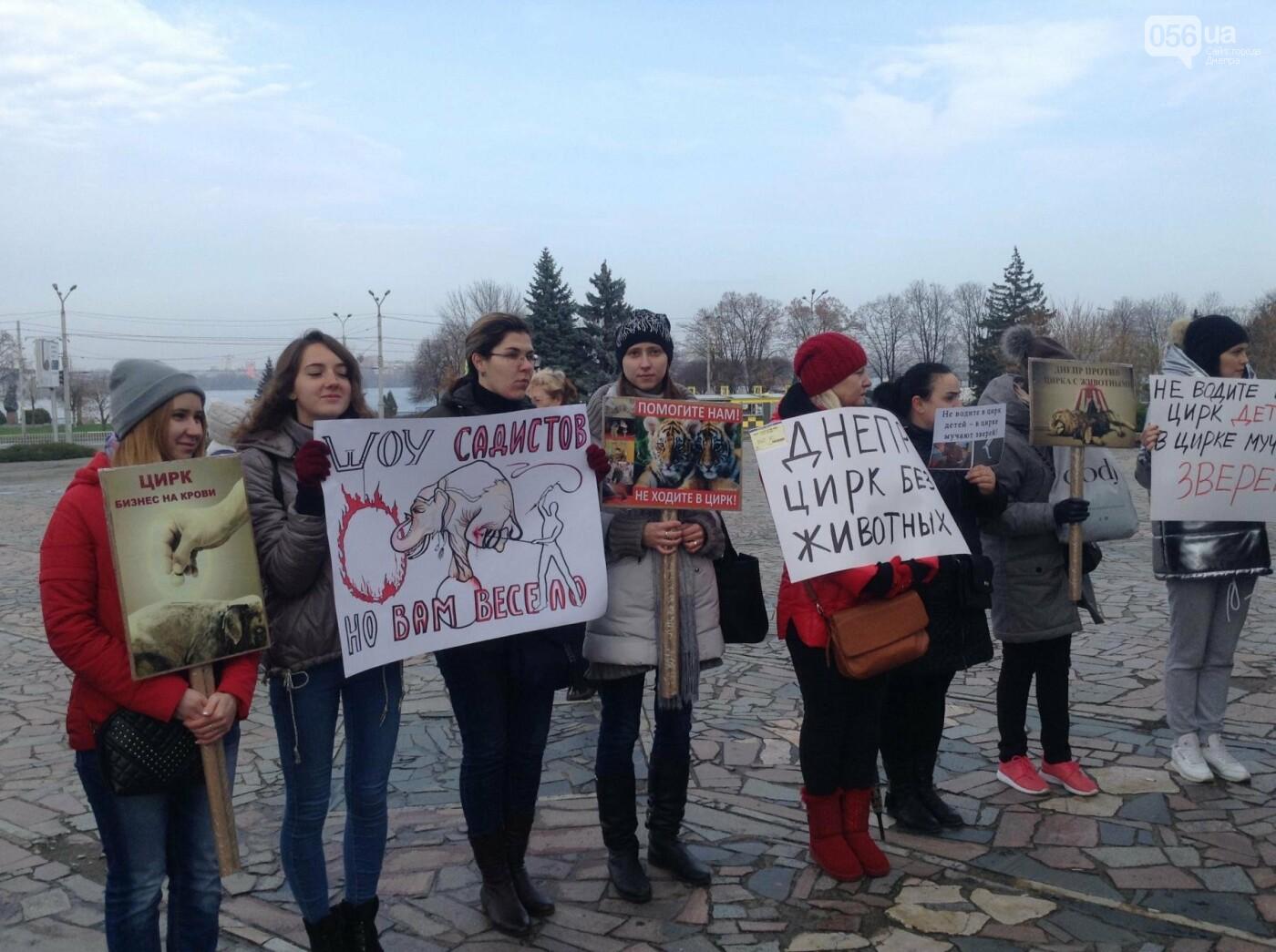 В Днепре зоозащитники пикетировали государственный цирк (ФОТО, ВИДЕО), фото-4