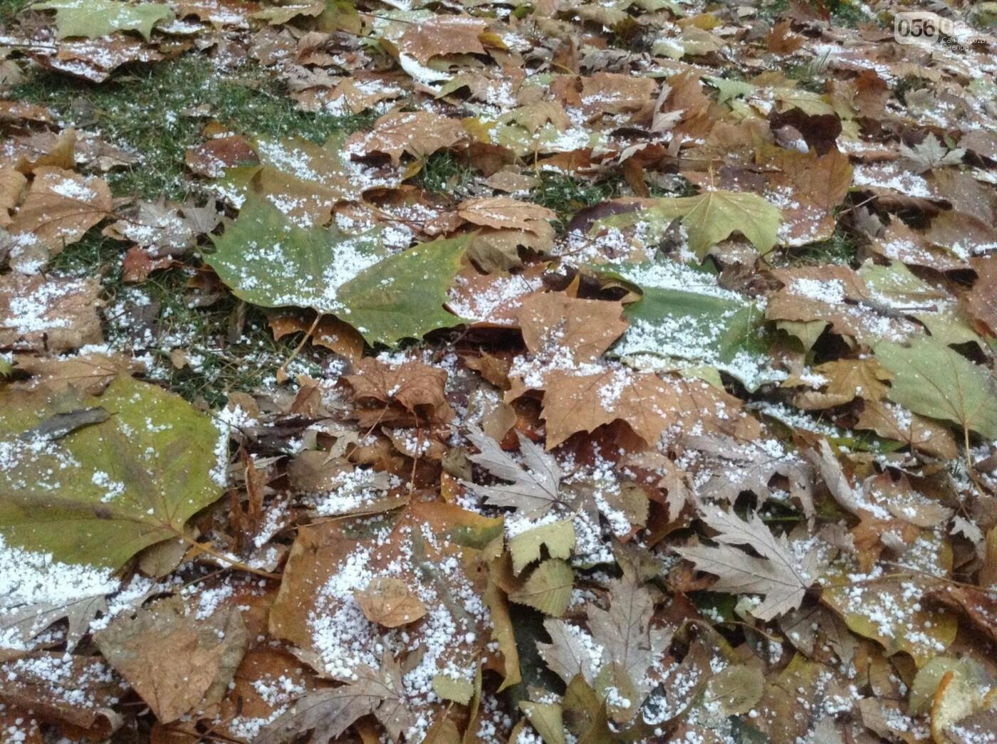 В Днепр пришла зима: выпал первый снег (ФОТО, ВИДЕО), фото-2