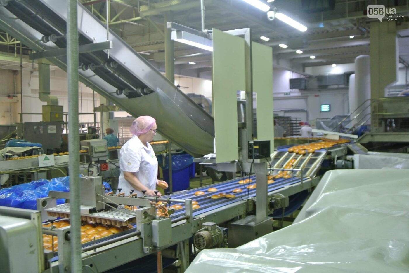 Как производят булочки для МакДональдс в Днепре (ФОТО, ВИДЕО), фото-1