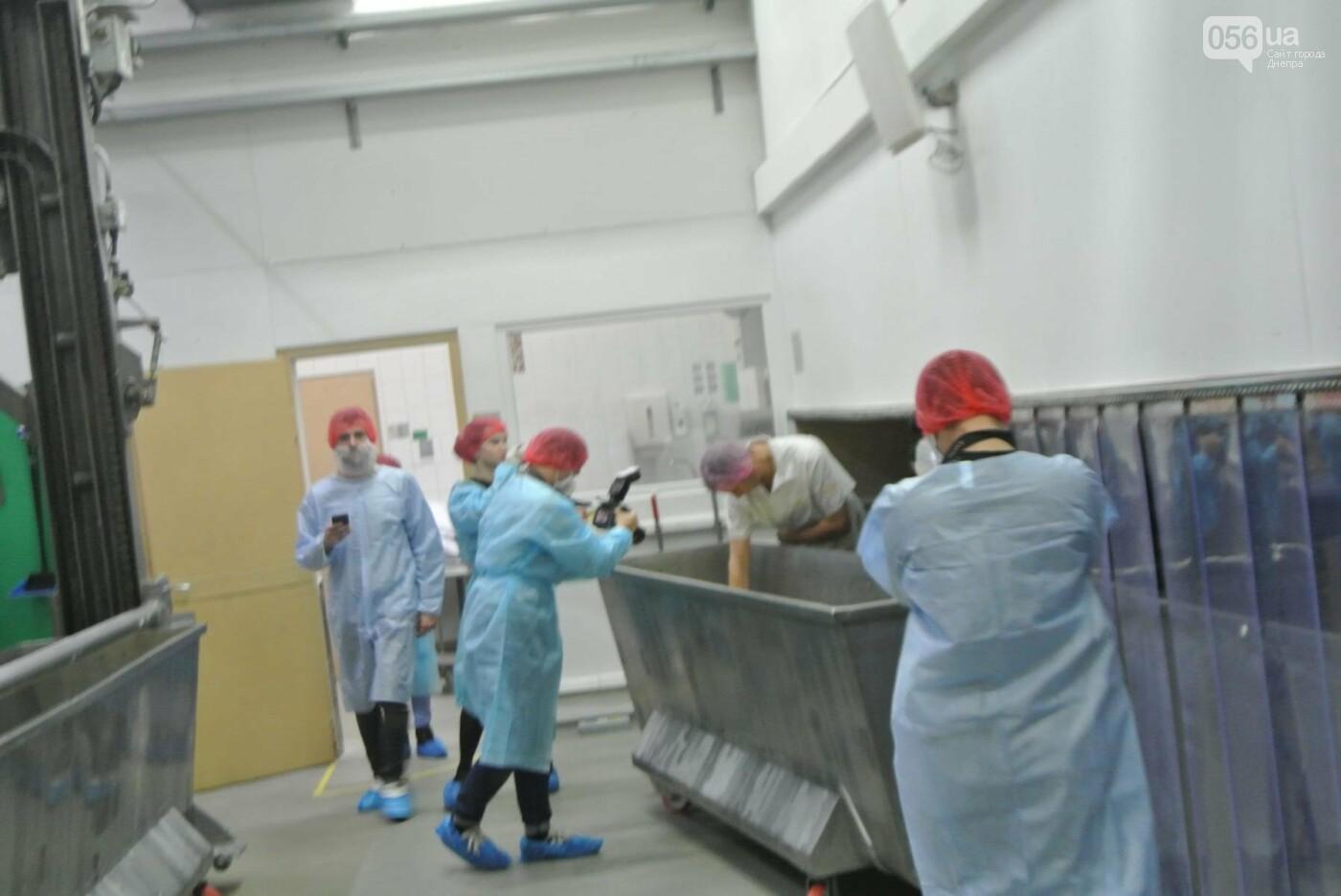 Как производят булочки для МакДональдс в Днепре (ФОТО, ВИДЕО), фото-8