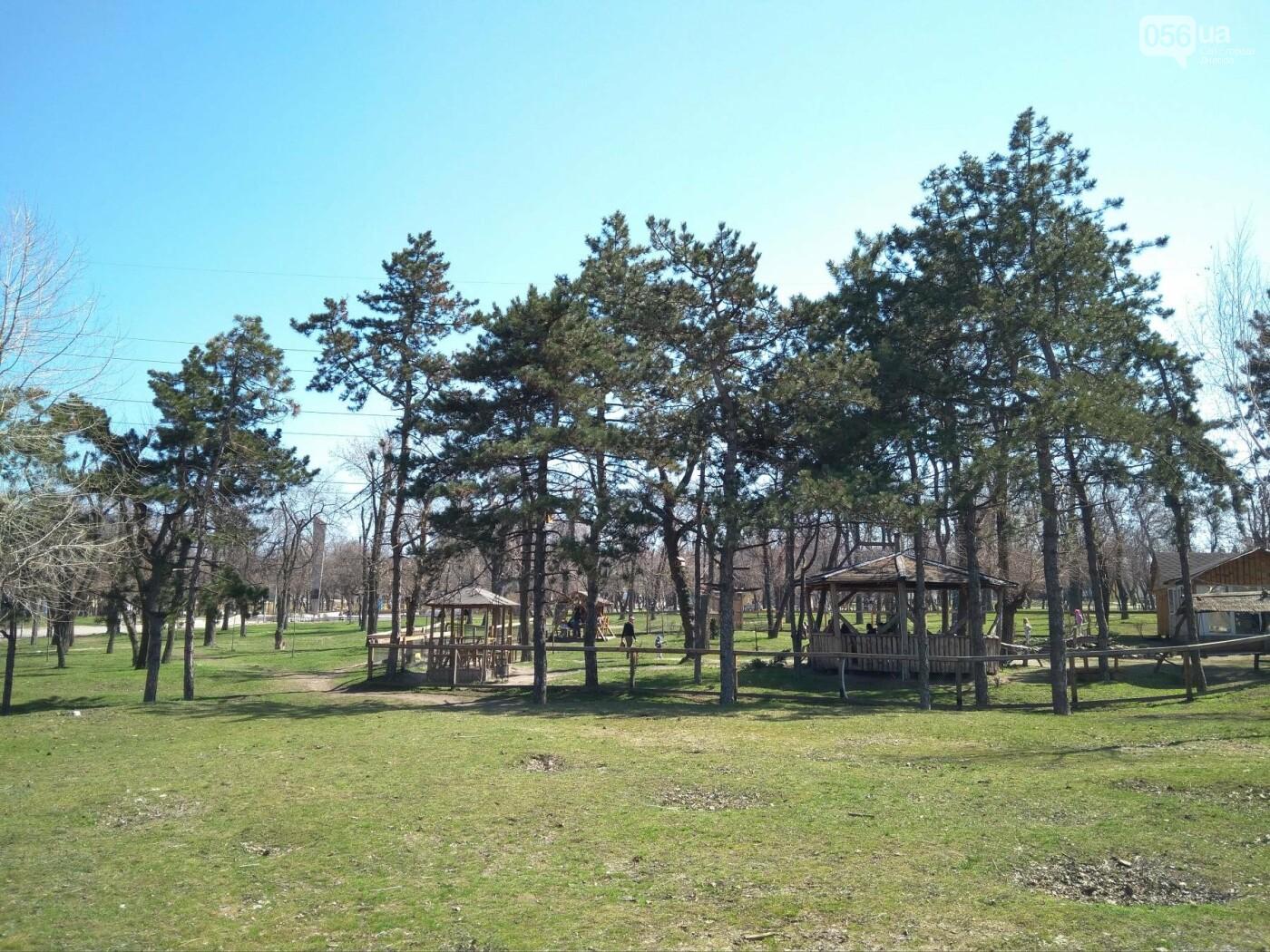 В Днепр пришла долгожданная весна (ФОТОРЕПОРТАЖ), фото-6