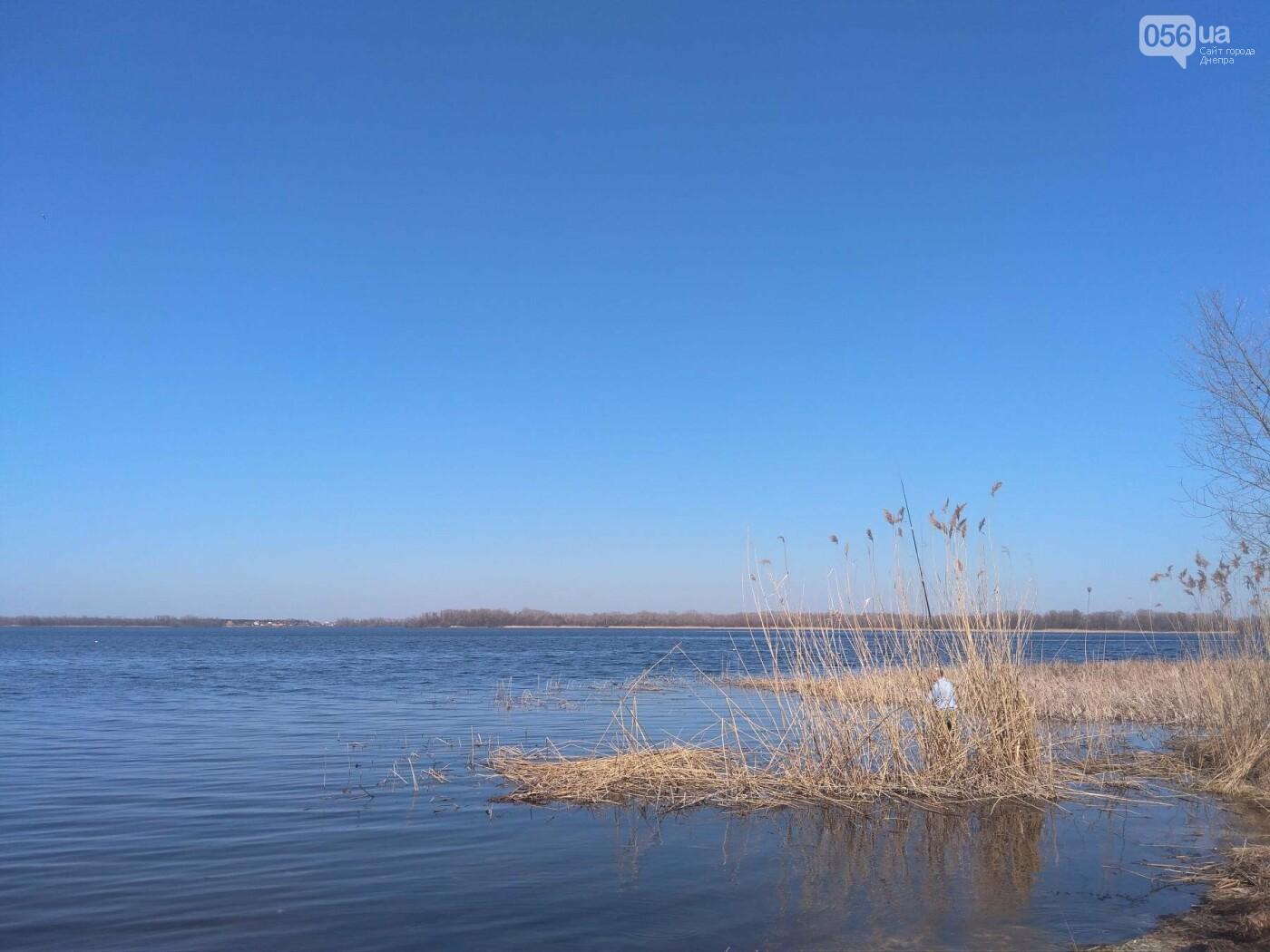 В Днепр пришла долгожданная весна (ФОТОРЕПОРТАЖ), фото-3