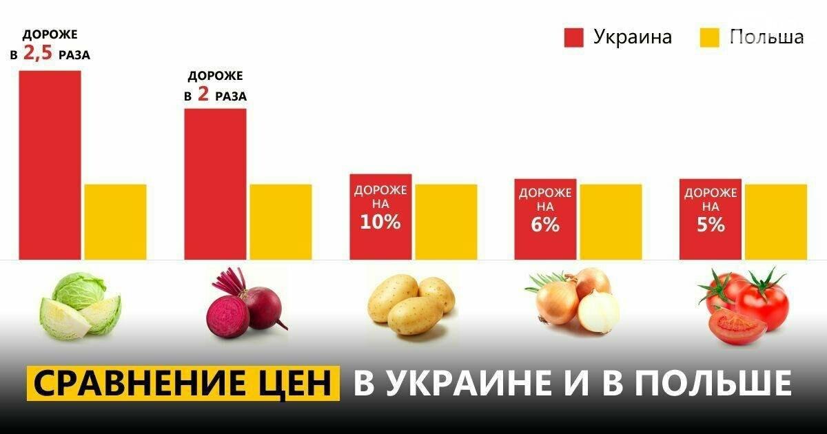 Вилкул: В Украине от 50 до 90% товаров из корзины социальных продуктов питания не просто сопоставимы с европейскими ценами, а подчас и выше , фото-1