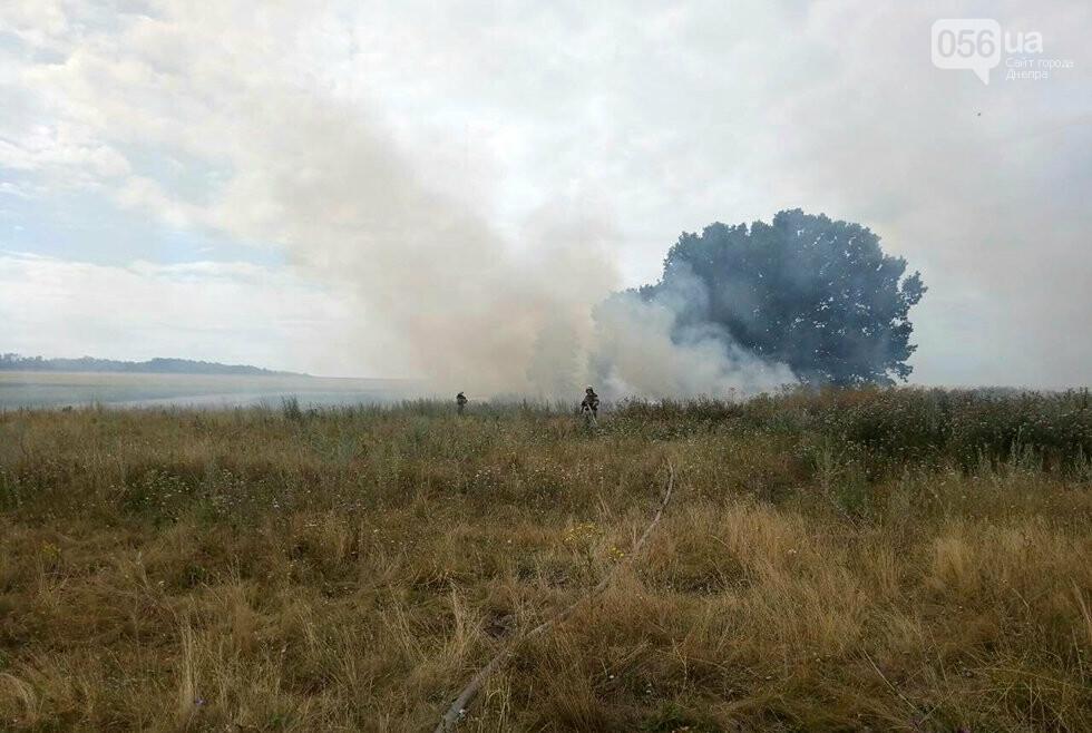За ночь на Днепропетровщине потушили 68 возгораний в лесах и полях, - ФОТО, фото-4