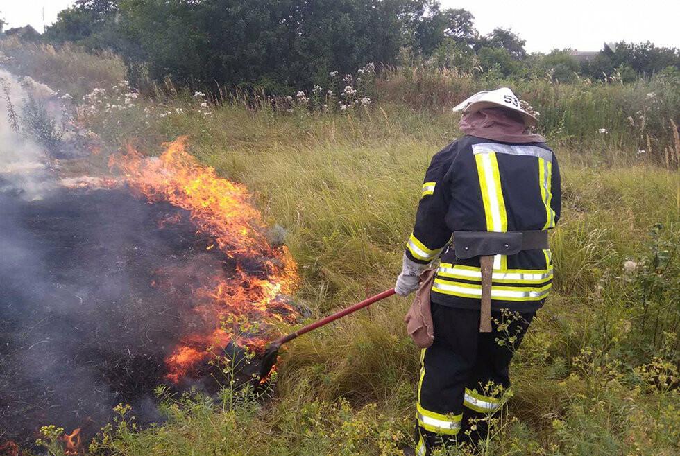 За ночь на Днепропетровщине потушили 68 возгораний в лесах и полях, - ФОТО, фото-1