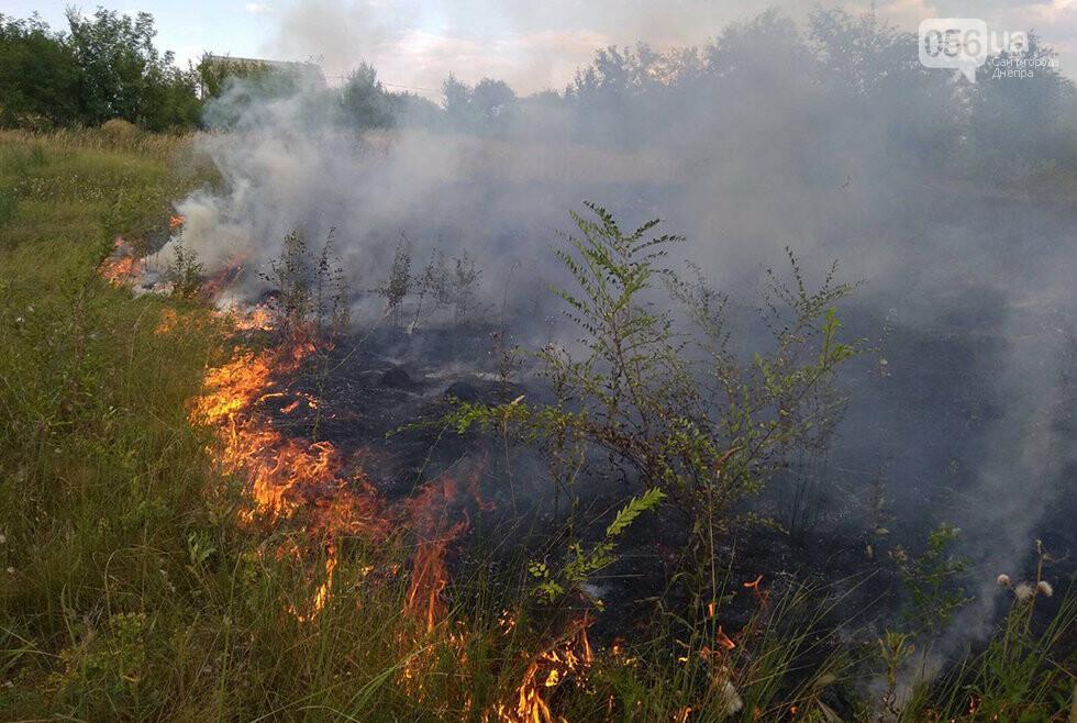 За ночь на Днепропетровщине потушили 68 возгораний в лесах и полях, - ФОТО, фото-3