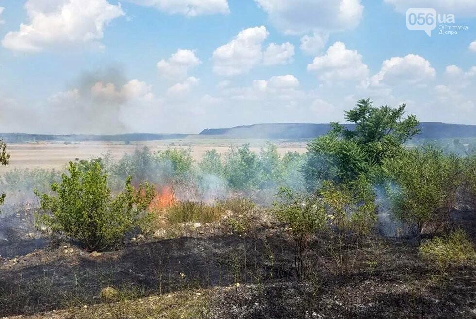 За ночь на Днепропетровщине потушили 68 возгораний в лесах и полях, - ФОТО, фото-6