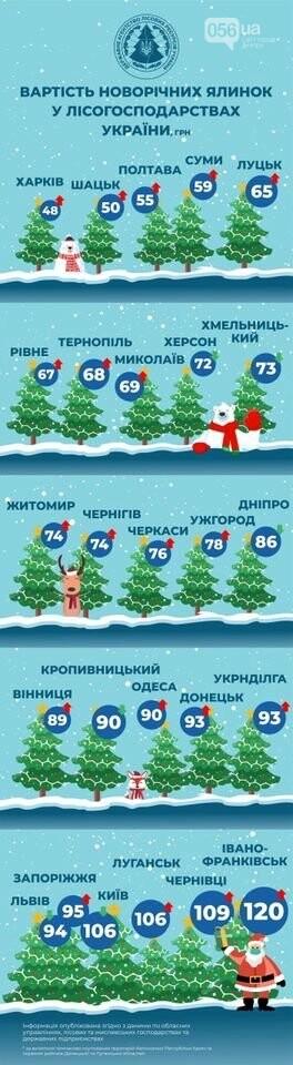 Стоимость елок в Днепре и других городах Украины