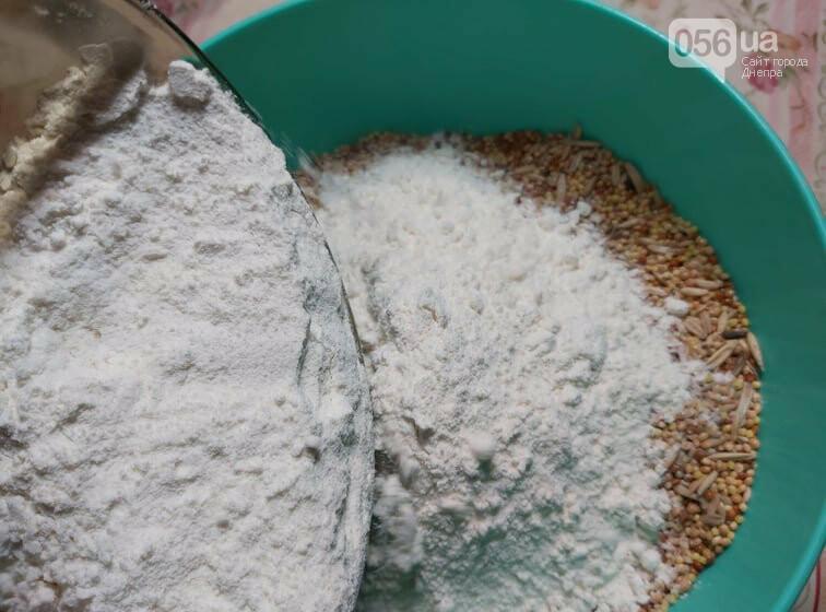 Покорми синичку: как днепрянам сделать экологичную кормушку своими руками, - ИНСТРУКЦИЯ, фото-9
