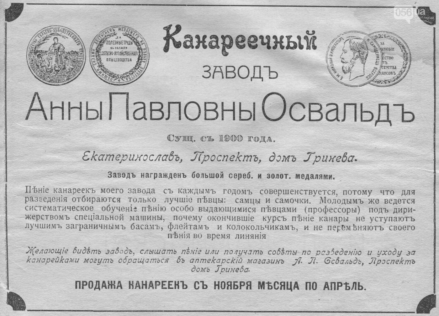 Как выглядели рекламные объявления времен Екатеринослава и советского Днепра: архивные фото, фото-2