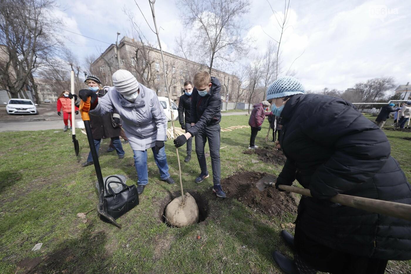 Днепр цветущий: дети и горожане элегантного возраста вместе высаживают деревья для нового сквера, фото-3