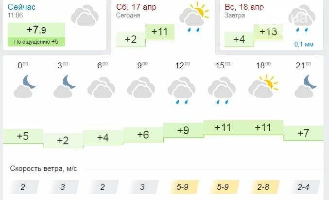 Дожди, туман, холод и сильный ветер: на этих выходных в Днепре «нелетная» погода , фото-1