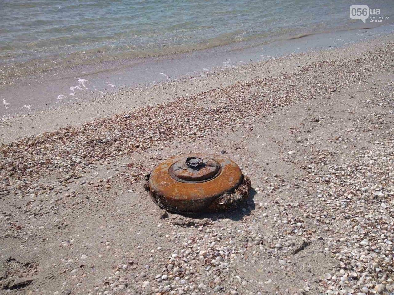 На море, куда ездят большинство днепрян, нашли жуткие находки, - ФОТО 18+, фото-4