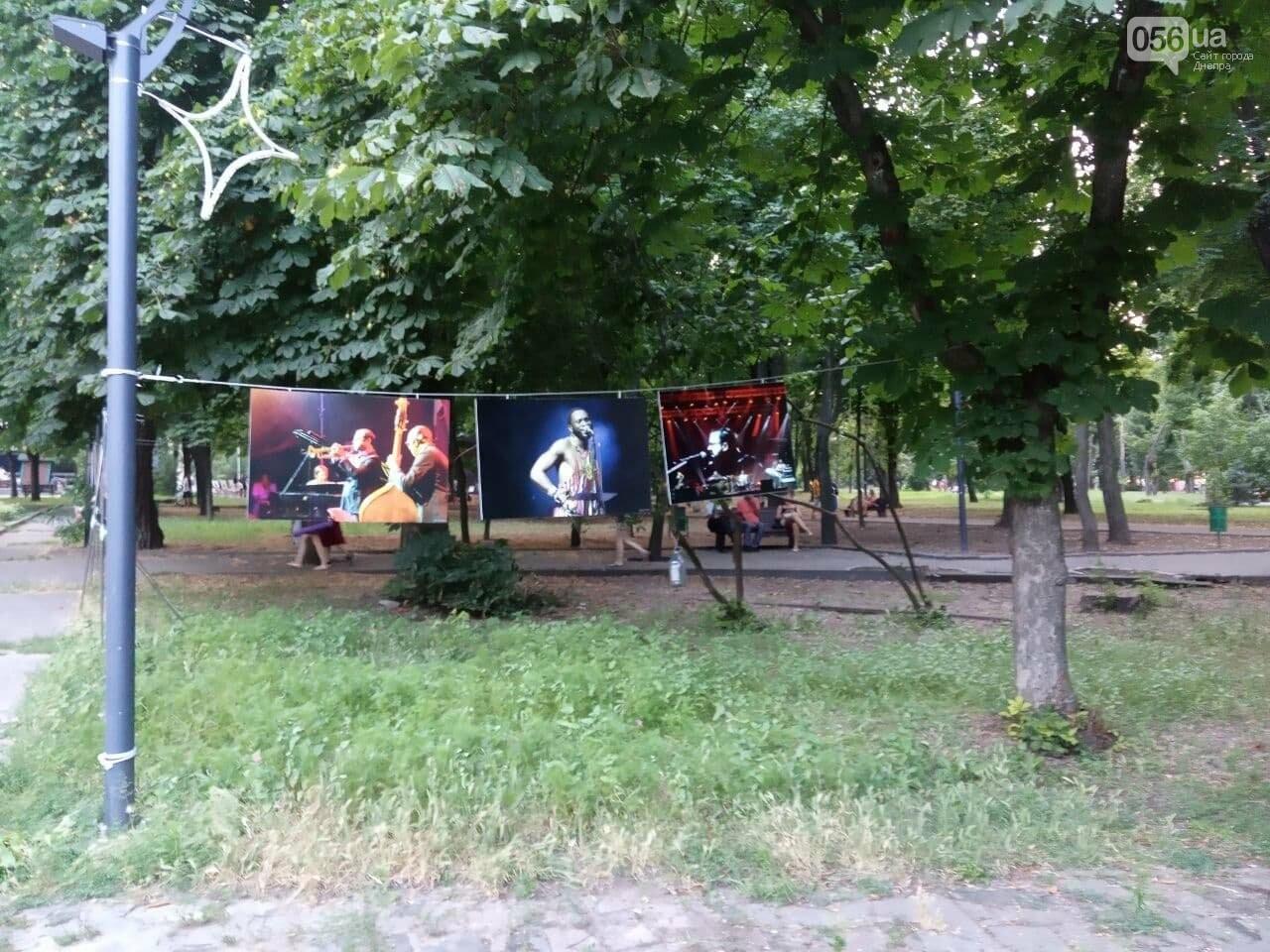 В Днепре по всей территории парка Шевченко звучит музыка нон-стоп, - ФОТО, ВИДЕО, фото-36