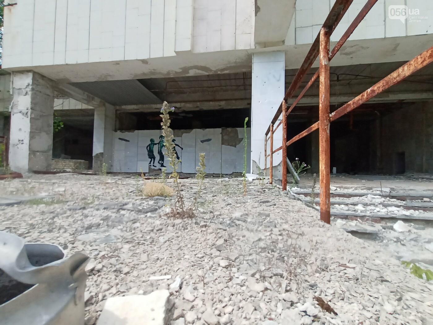 Минус пара кед и брюк: путешествие одного днепрянина в Чернобыль, - ФОТО, ВИДЕО, фото-58
