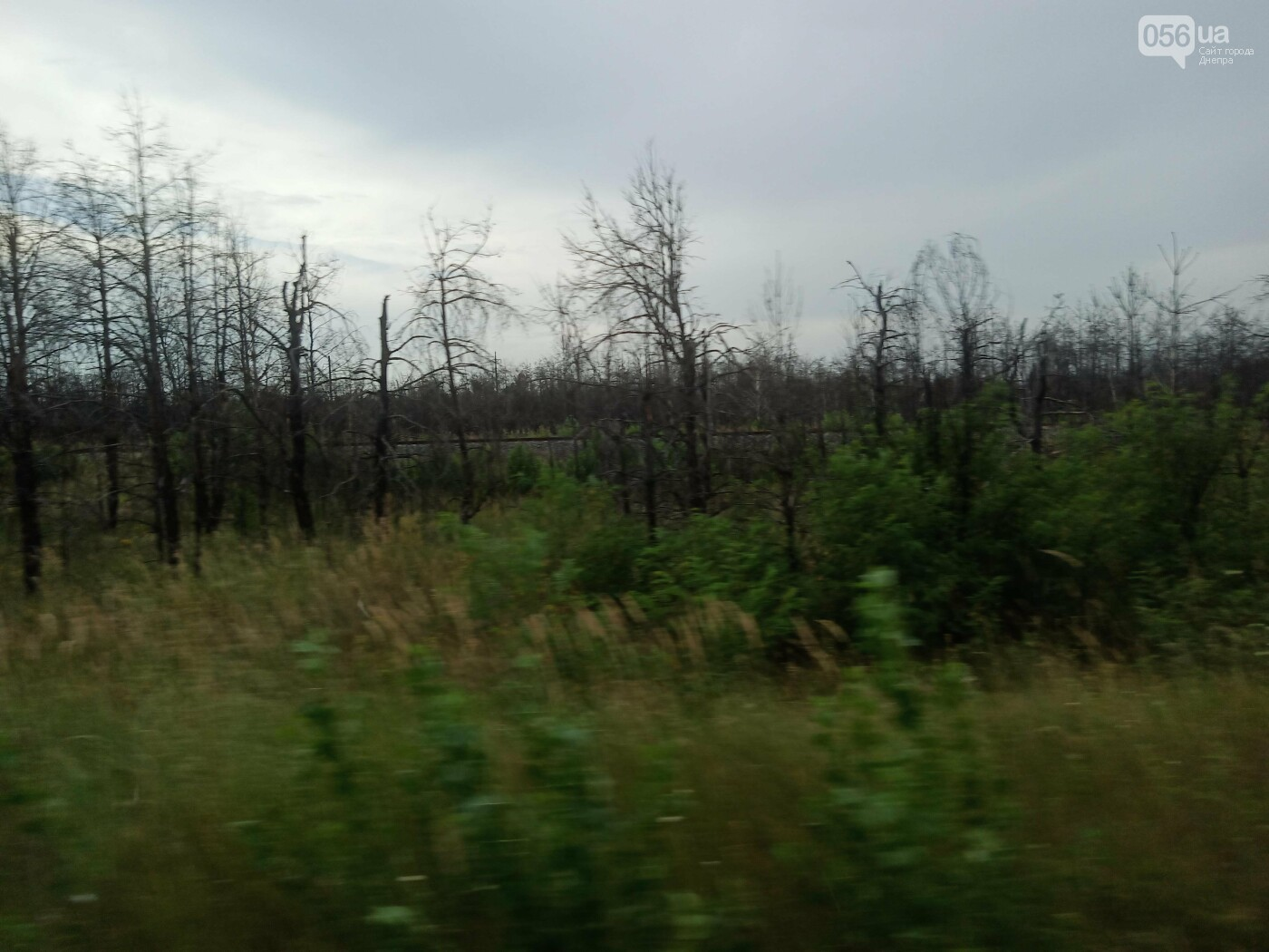 Минус пара кед и брюк: путешествие одного днепрянина в Чернобыль, - ФОТО, ВИДЕО, фото-94