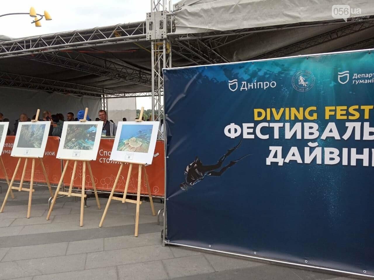 В Днепре провели первый в Украине Международный фестиваль дайвинга, - ФОТО, ВИДЕО, фото-14