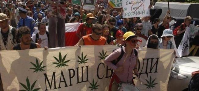 Марш за легализацию конопли конопля в мелитополе