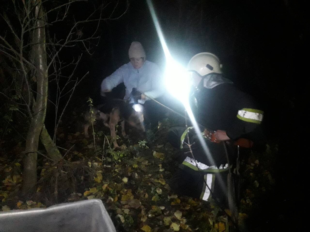 На Днепропетровщине нашли пропавшую овчарку (ФОТО), фото-5
