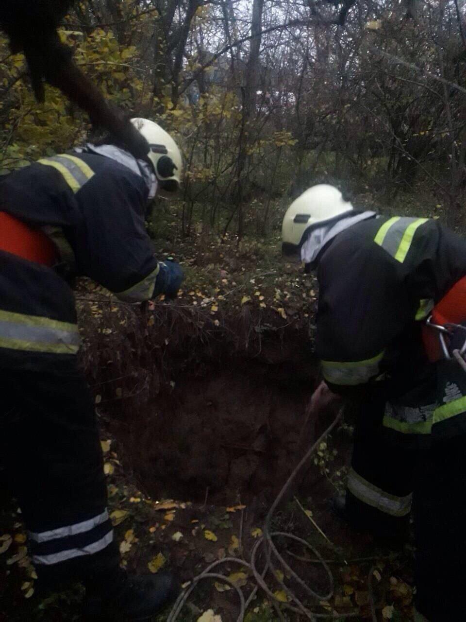 На Днепропетровщине нашли пропавшую овчарку (ФОТО), фото-2