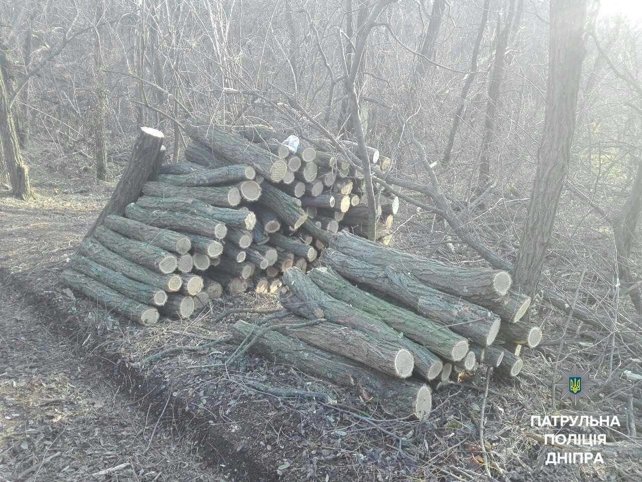 В заповеднике Днепропетровской области задержали браконьера (ФОТО), фото-3