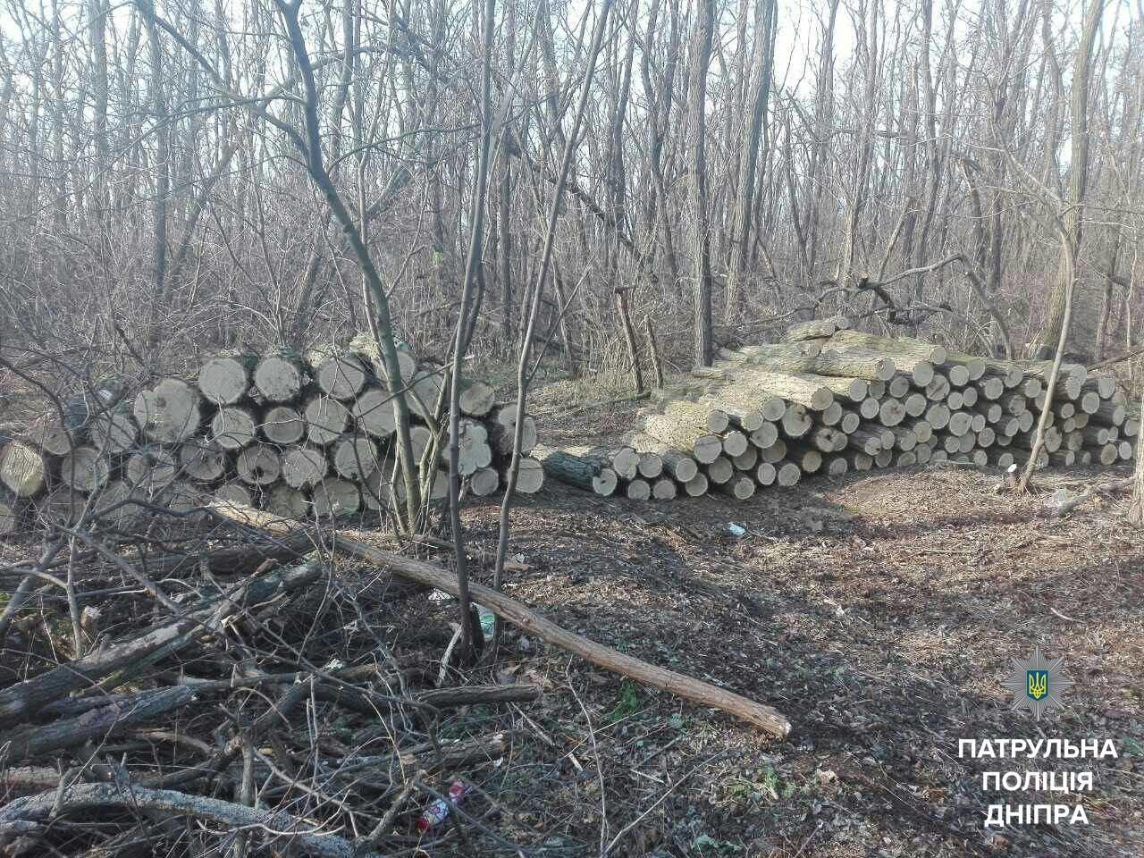 В заповеднике Днепропетровской области задержали браконьера (ФОТО), фото-1