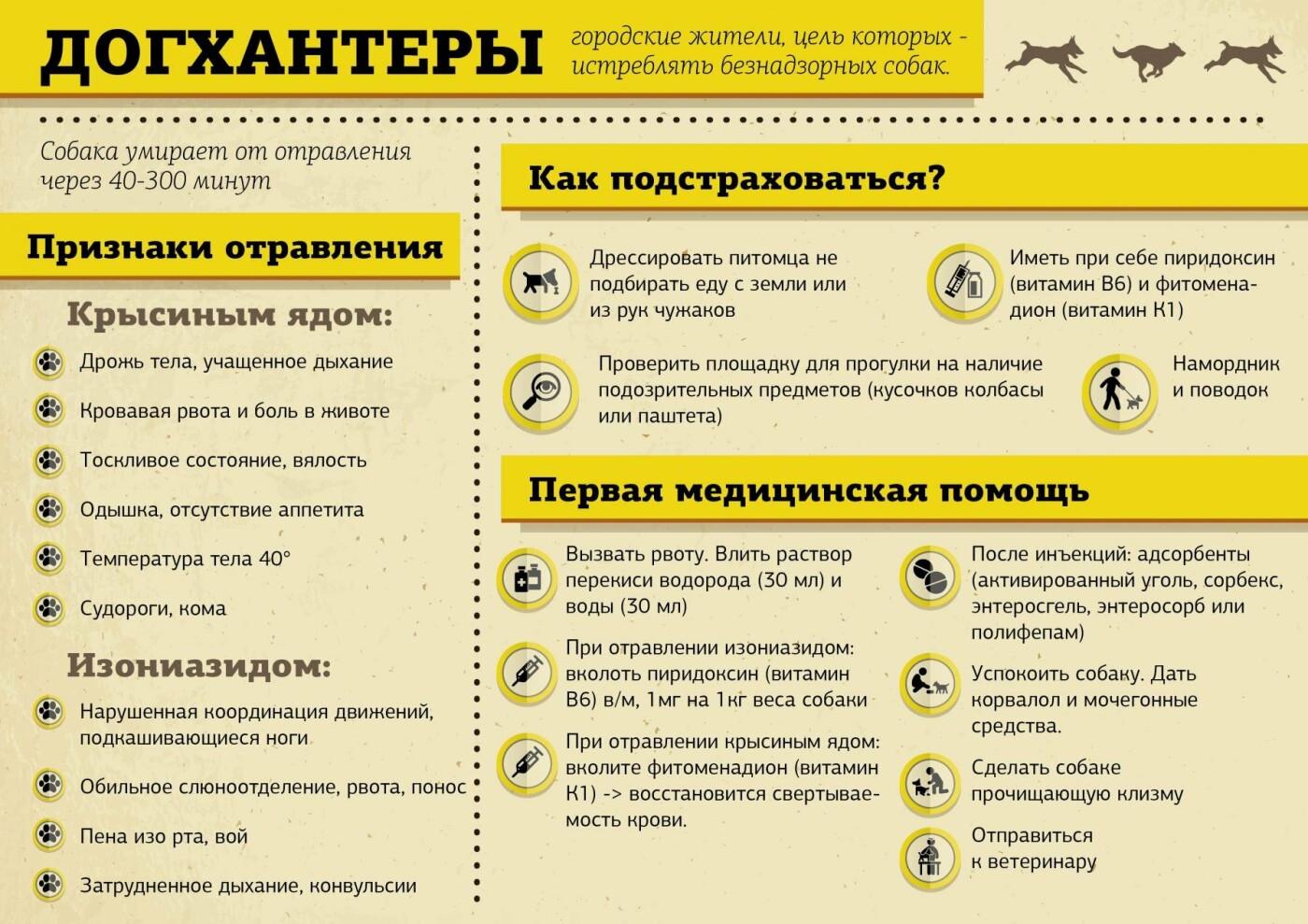 Антидогхантер: как определить отравленное животное и спасти питомца (ИНСТРУКЦИЯ), фото-5