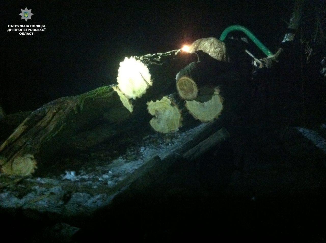 Под Днепром патрульные остановили незаконную вырубку леса (ФОТО), фото-3