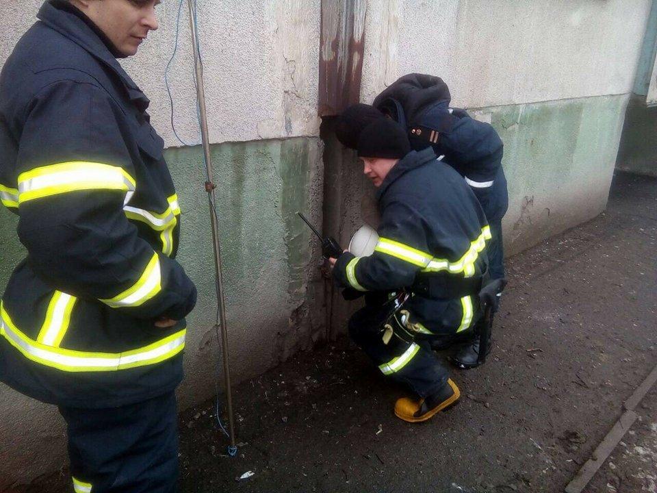 Минутка добра: как на Днепропетровщине пожарные спасали таксу (ФОТО) , фото-3
