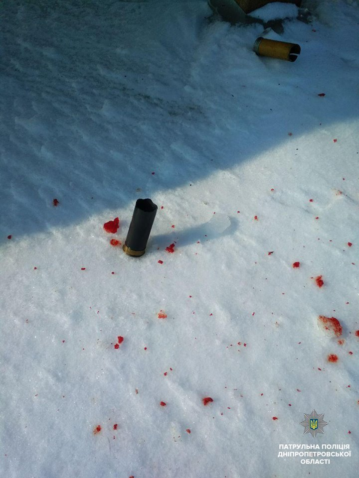 В Днепре неизвестные расстреляли собаку (ФОТО), фото-2