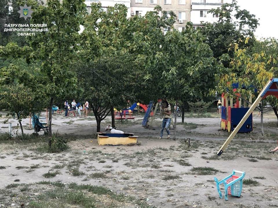 В Днепре женщину оштрафовали за выгул собаки на детской площадке, - ФОТО, фото-1