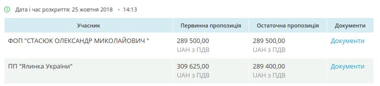 Почти 1,4 миллиона гривен на украшения: в Днепре определили победителя тендера на закупку праздничных фигур, фото-7