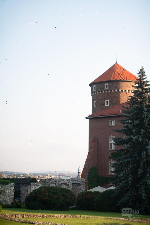 Приехать в Польшу и влюбиться, часть 1: мини-гайд по Кракову о жилье, транспорте и развлечениях, и экскурсия в Аушвиц-Биркенау , - ФОТО, фото-15