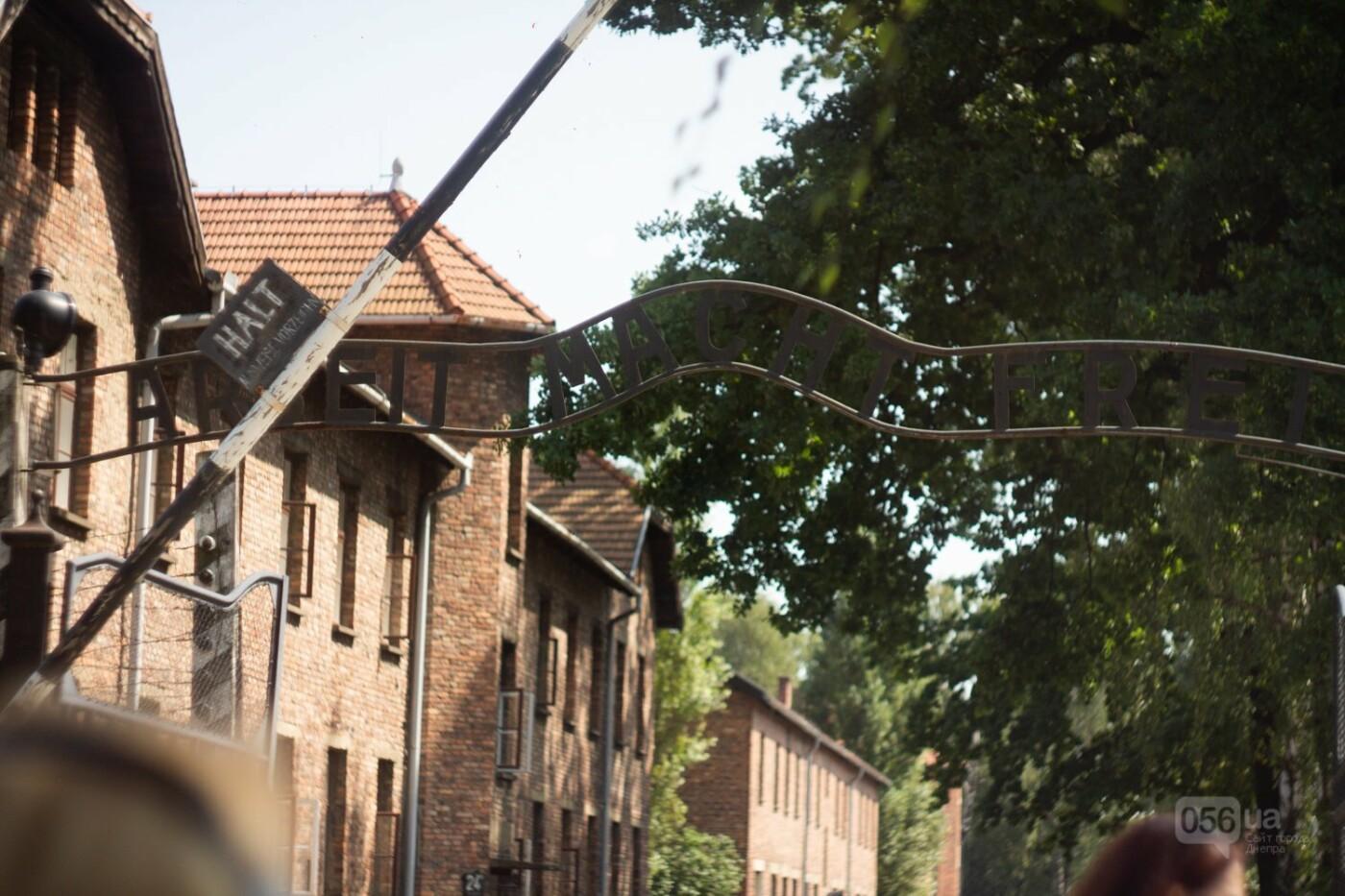 Приехать в Польшу и влюбиться, часть 1: мини-гайд по Кракову о жилье, транспорте и развлечениях, и экскурсия в Аушвиц-Биркенау , - ФОТО, фото-30