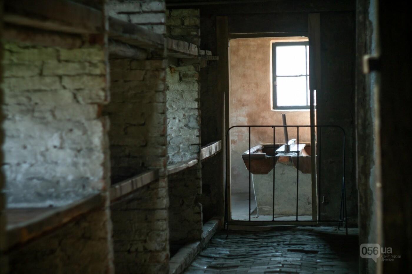 Приехать в Польшу и влюбиться, часть 1: мини-гайд по Кракову о жилье, транспорте и развлечениях, и экскурсия в Аушвиц-Биркенау , - ФОТО, фото-38