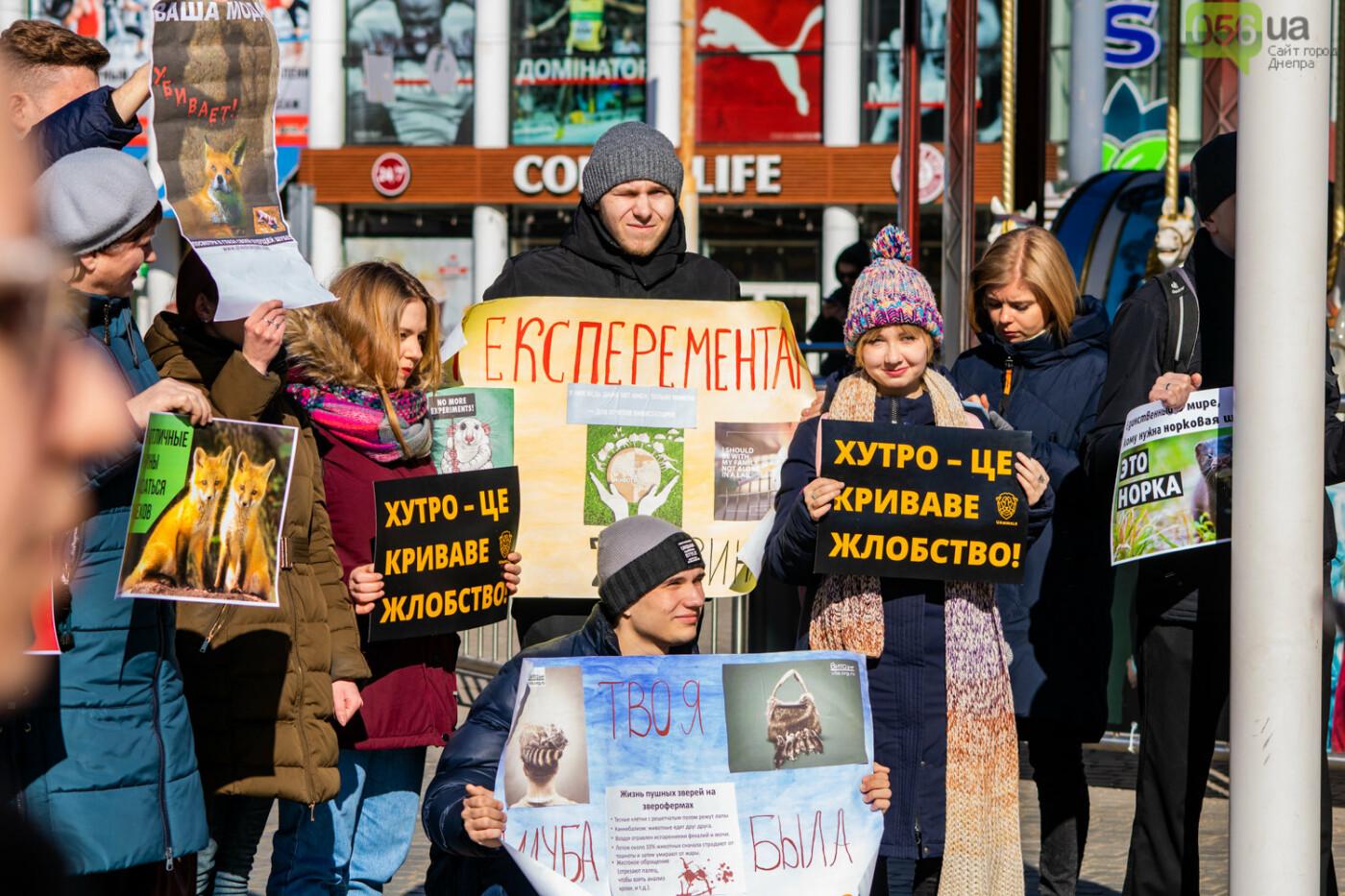Полярная лиса, законопроект и кричащие плакаты: как в центре Днепра прошла антимеховая акция, - ФОТОРЕПОРТАЖ, ВИДЕО, фото-7