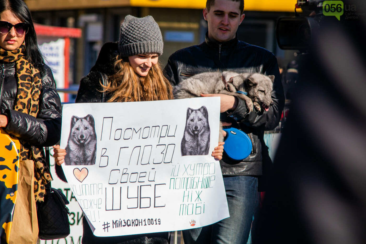 Полярная лиса, законопроект и кричащие плакаты: как в центре Днепра прошла антимеховая акция, - ФОТОРЕПОРТАЖ, ВИДЕО, фото-12