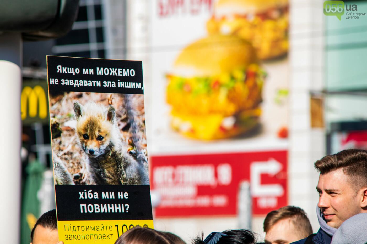 Полярная лиса, законопроект и кричащие плакаты: как в центре Днепра прошла антимеховая акция, - ФОТОРЕПОРТАЖ, ВИДЕО, фото-9