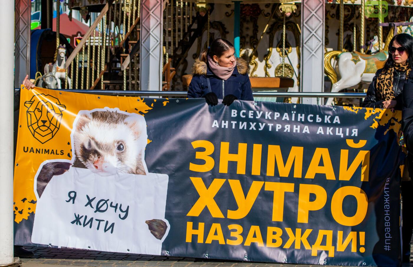 Полярная лиса, законопроект и кричащие плакаты: как в центре Днепра прошла антимеховая акция, - ФОТОРЕПОРТАЖ, ВИДЕО, фото-3