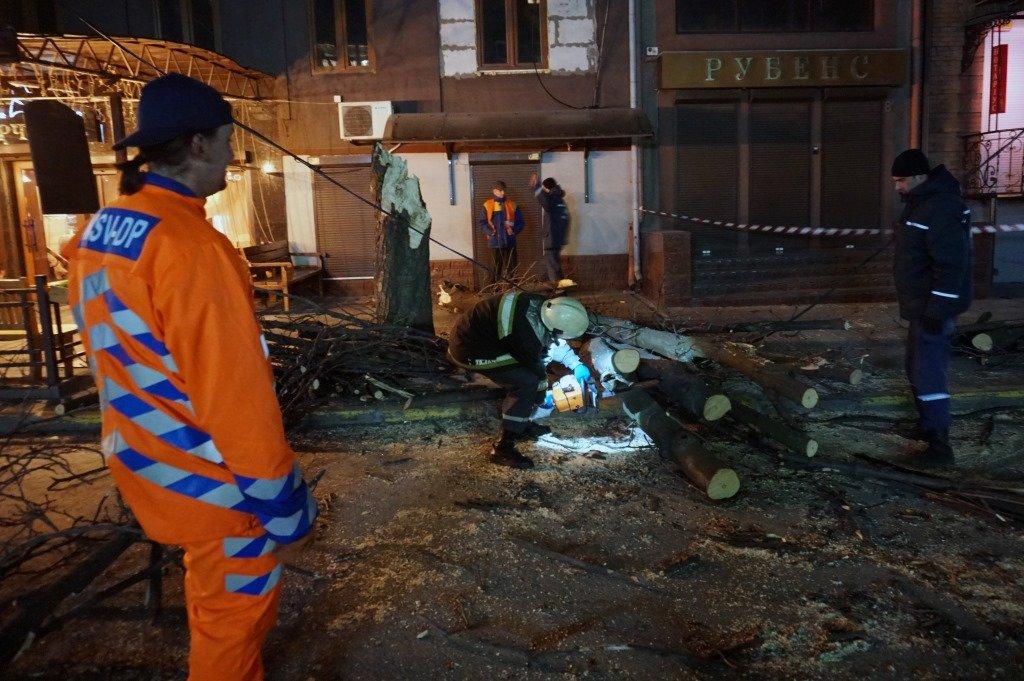 В Днепре и области из-за бури деревья падали на авто: последствия непогоды, фото-1