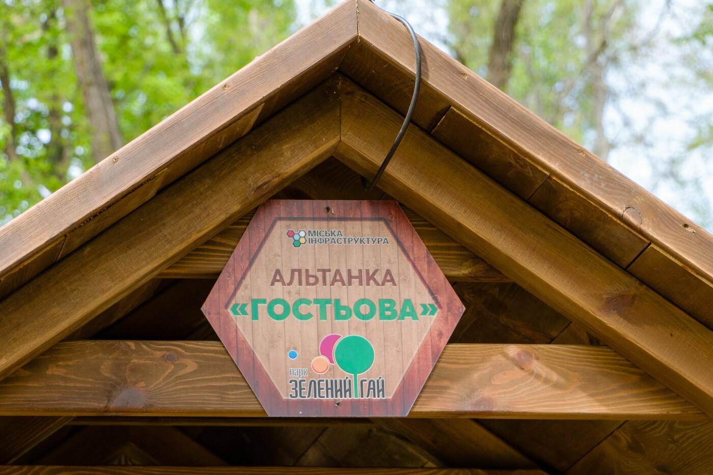 Зоны отдыха, фестивали и пикники: летняя программа парка Зеленый Гай, - ФОТО, фото-7
