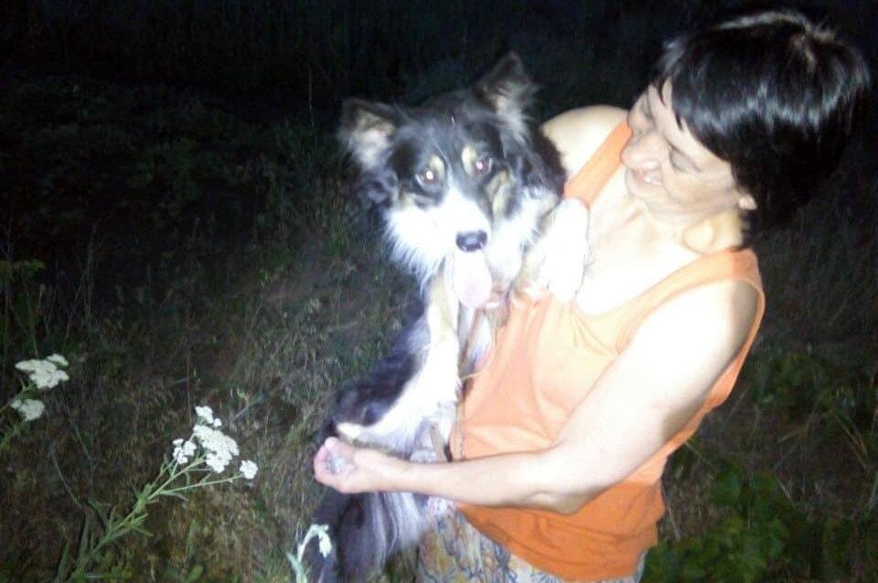 В Днепропетровской области спасатели доставали собачку из старого колодца, - ФОТО , фото-2