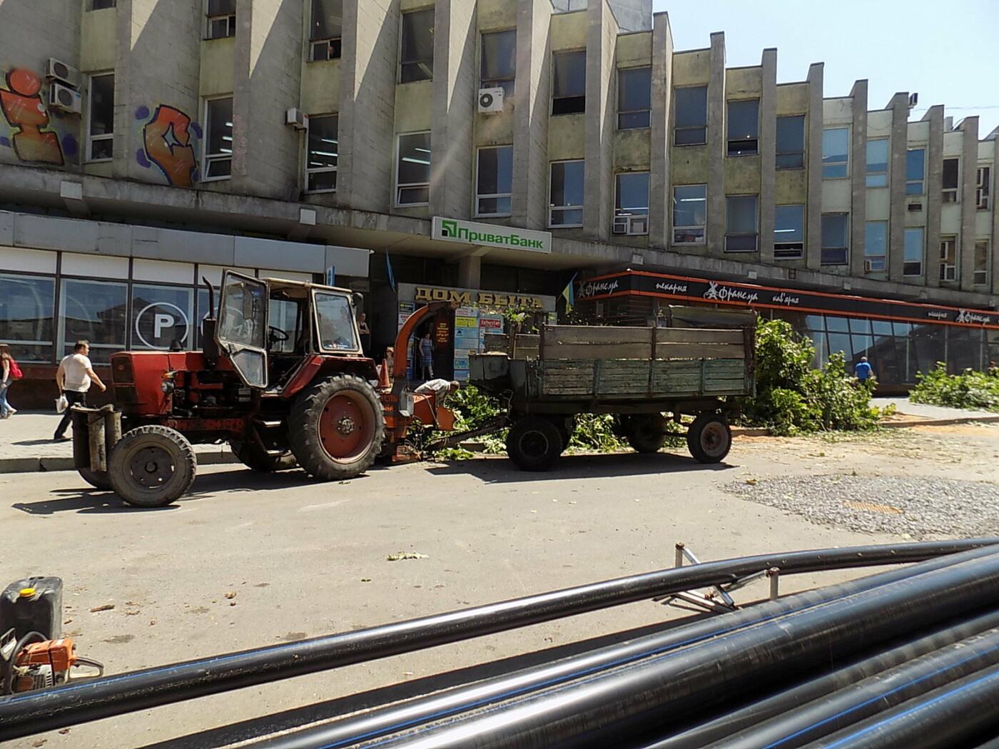 В Днепре провели «похороны» деревьев с Короленко: последние деревья срубили, пока город спал, - ФОТО, фото-2