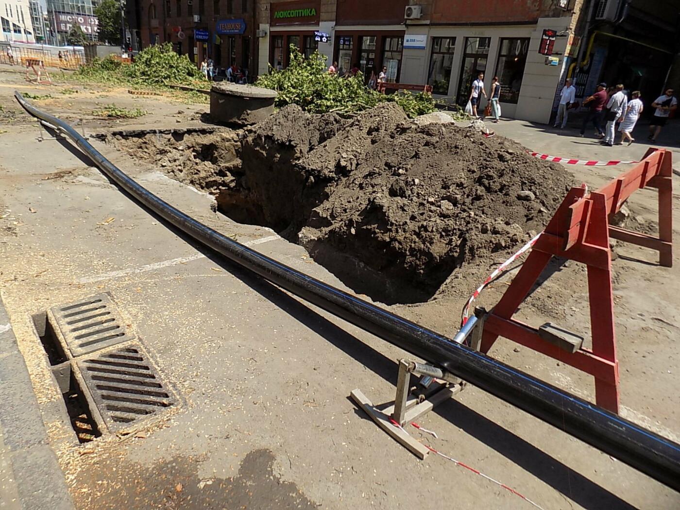 В Днепре провели «похороны» деревьев с Короленко: последние деревья срубили, пока город спал, - ФОТО, фото-5